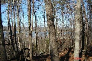 Lot 83 Indian Shadows Drive 83, Ten Mile, TN 37880 Property Photo