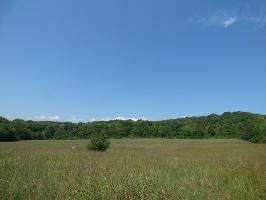 Tract 2 Roane State Hwy, Harriman, TN 37748 Property Photo