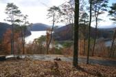 Lot 3 Hickory Knoll Circle 3, Whitesburg, TN 37891 - Image 1: Wooded lot