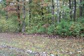 Lot 62 East Shore Drive, Rockwood, TN 37854 - Image 1: IMG_2234[1]