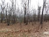 145 Saint George Drive, Crossville, TN 38558 - Image 1: Front of Lot