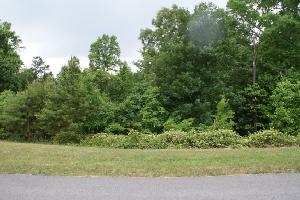 Lot 106 Indian Shadows Drive 106, Maryville, TN 37801 Property Photos