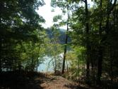 Lot 36 Mountain Shores Rd, New Tazewell, TN 37825 - Image 1: P9110435