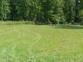 Lot 25 Shields Crossing Drive 25, Bean Station, TN 37708 Property Photo