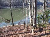 Proffitt Hollow , New Tazewell, TN 37825 - Image 1: From building site to water