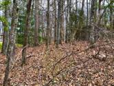 11 Oxford Circle, Fairfield Glade, TN 38558 - Image 1: View of the Lot