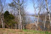 2029 Turner Landing Rd, Russellville, TN 37860 - Image 1: Primary Photo