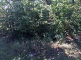 242 Manchester Rd 517, Fairfield Glade, TN 38558 - Image 1: typical lot