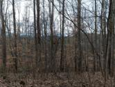 2708 W Gallaher Ferry Rd, Knoxville, TN 37932 - Image 1: From Road