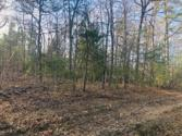 Lot 1 N Laurel Loop, Monterey, TN 38574 - Image 1: IMG_3404