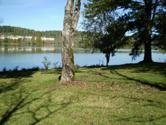 8005 River Drive, Oak Ridge, TN 37830 - Image 1: River bank2