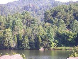 460 Marsh Hawk Drive 532, Vonore, TN 37885 Property Photo