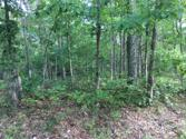 661 Lakeview Drive, Fairfield Glade, TN 38558 - Image 1: lot