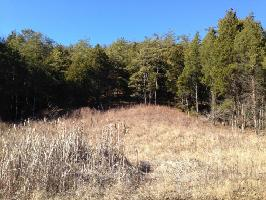 Lot 70 Grande Vista Drive 70, Dandridge, TN 37725 Property Photos