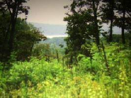 Lot 735 Russell Brothers Rd 735, Sharps Chapel, TN 37866 Property Photo
