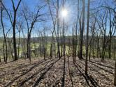 Lot 69 Lazy River Lane, Sevierville, TN 37876 - Image 1: 65375862-AEF1-45BF-86F1-885895550C40