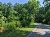 Lot 49 Bluewater Tr, Spring City, TN 37381 - Image 1: PXL_20210705_202910587