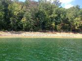 51 Norris Shores  51, Sharps Chapel, TN 37866 - Image 1: shoreline
