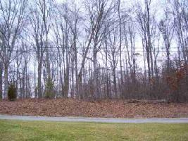 LOT 4R HARRISON FERRY ROAD, White Pine, TN 37890 Property Photos