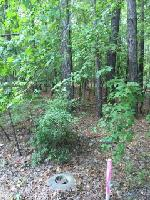 Lot 3 Vintage L COSBY CIRCLE, Greensboro, GA 30642 Property Photo