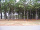 137 HAWKS RIDGE Lot 16, Eatonton, GA 31024 - Image 1