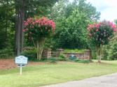 1920 WITHROW ROAD Lot 3A, Greensboro, GA 30642 - Image 1