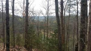 Lot 21 Jack Potts Dr, Dandridge, TN 37725 Property Photo