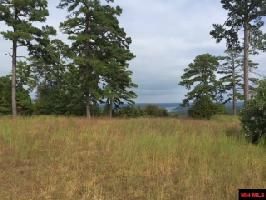 Lot 53 SWISS ALPS LANE, Mountain Home, AR 72653 Property Photo