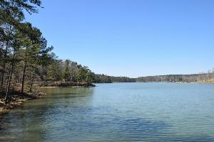 LOT 50 SIPSEY OVERLOOK, Double Springs, AL 35553 Property Photo