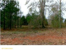 SUNSET COVE Lot 2, PELL CITY, AL 35128 Property Photo