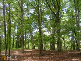 0 Cooper Valley Rd LOT 4 , Martin, GA 30557 Property Photo