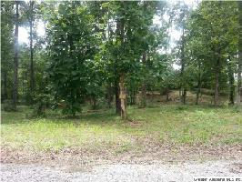 ELLIS RD #18, ARLEY, AL 35541 Property Photo