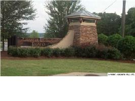 RANCH MARINA RD #18, PELL CITY, AL 35128 Property Photo