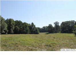 CO RD 619, WOODLAND, AL 36280 Property Photo