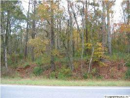 0 HWY 79 LOT A, GUNTERSVILLE, AL 35976 Property Photo