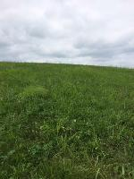 Smokey Quartz Blvd 272, New Tazewell, TN 37825 Property Photo