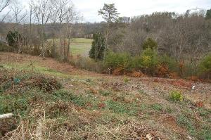 390 Butterscotch Lane, Loudon, TN 37774 Property Photo
