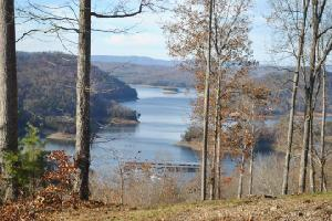 Overlook Tr 59, Maynardville, TN 37807 Property Photo