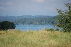 Lot 50 Fishers Loop  50, Sharps Chapel, TN 37866 Property Photos