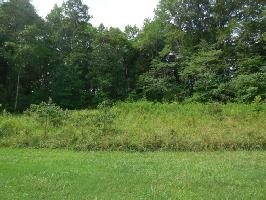 East Shore Dr. Lot 80  80, Rockwood, TN 37854 Property Photo