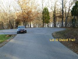 Didodi Tr 33, Vonore, TN 37885 Property Photo