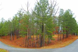 1530 PULLMAN LANE Lot 39, Greensboro, GA 30642 Property Photo