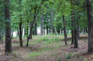 2771 CLUB DRIVE Lot 1140, Greensboro, GA 30642 Property Photo