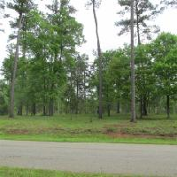 1231 GLEN EAGLE DRIVE Lot 69, Greensboro, GA 30642 Property Photo