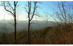 LOT25 DOUBLE KNOB , Hayesville, NC 28904 Property Photos