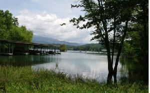 LOT 5 CYPRESS POINTE LANE, Hayesville, NC 28904 Property Photo