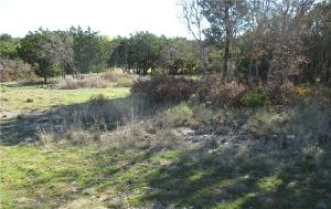 740 Bay Hill Drive Lot 125, Possum Kingdom Lake, TX 76449 Property Photo