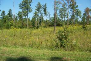 Lot 1 Dove Manor Rd., Littleton, NC 27850 Property Photo