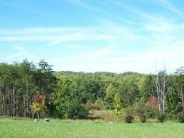 Lot 16 Edgewater DR, Moneta, VA 24121 Property Photo