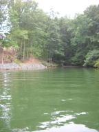 Lot 3R Baywatch DR, Moneta, VA 24121 Property Photo